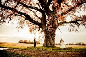 En fotograf og et bryllup